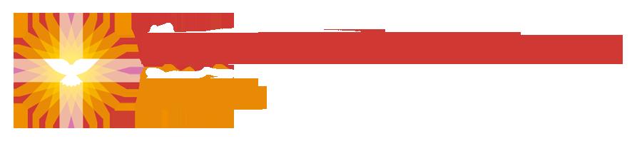 logo pkn