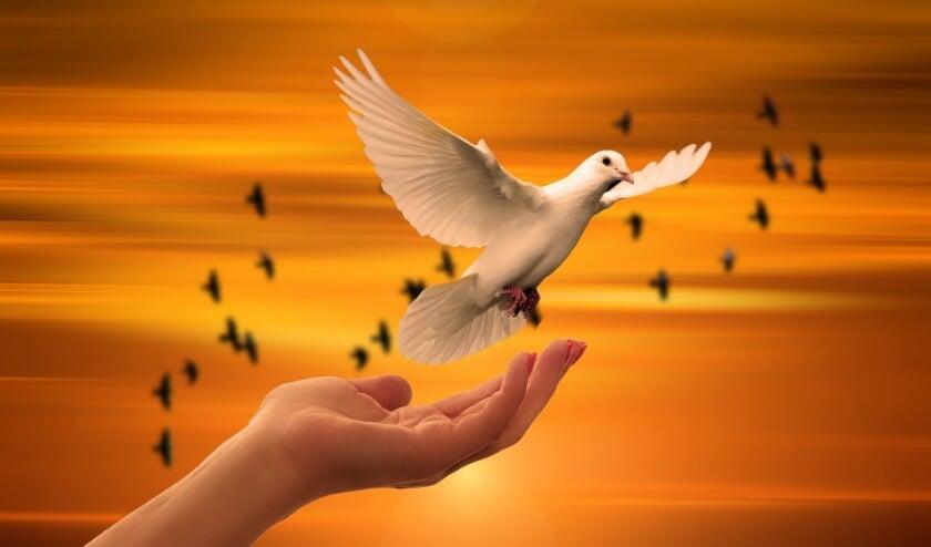 Vredesdienst